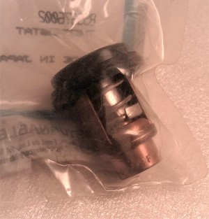 Mercury | THERMOSTAT | Package Quantity @1 | 855676002 | 8M0119207